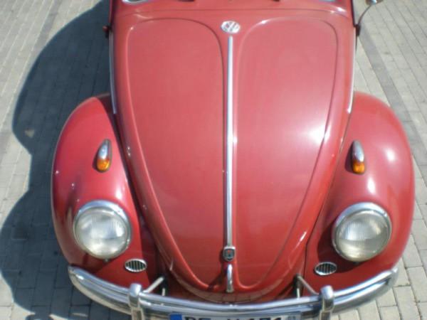 VW Käfer vorher